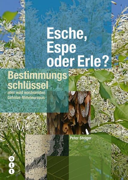 Esche, Espe oder Erle? Bestimmungsschlüssel aller wild wachsenden Gehölze Mitteleuropas