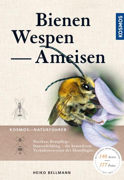 Bienen, Wespen, Ameisen - Staatenbildende Insekten Mitteleuropas