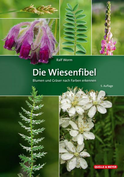 Die Wiesenfibel - Blumen und Gräser nach Farben erkennen