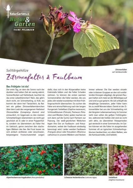 Natur&Garten 1/2017A Zitronenfalter und Faulbaum