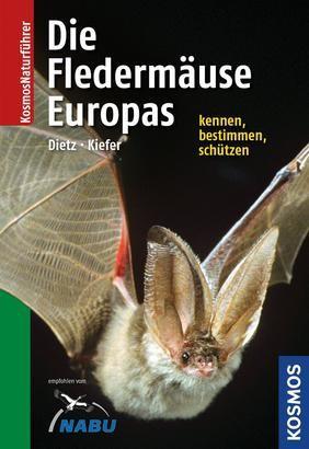 Naturführer Fledermäuse Europas - Alle Arten erkennen und sicher bestimmen