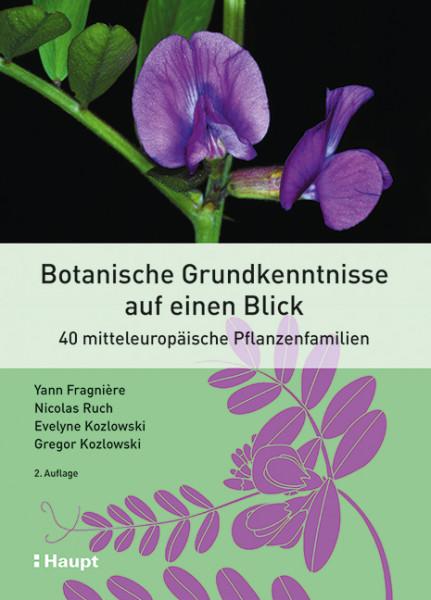 Botanische Grundkenntnisse auf einen Blick - 40 mitteleuropäische Pflanzenfamilien