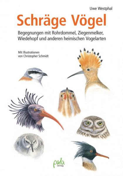 Schräge Vögel - Begegnungen mit Rohrdommel, Ziegenmelker, Wiedehopf und anderen heimischen Vogelarte